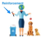 7rs reinforcement